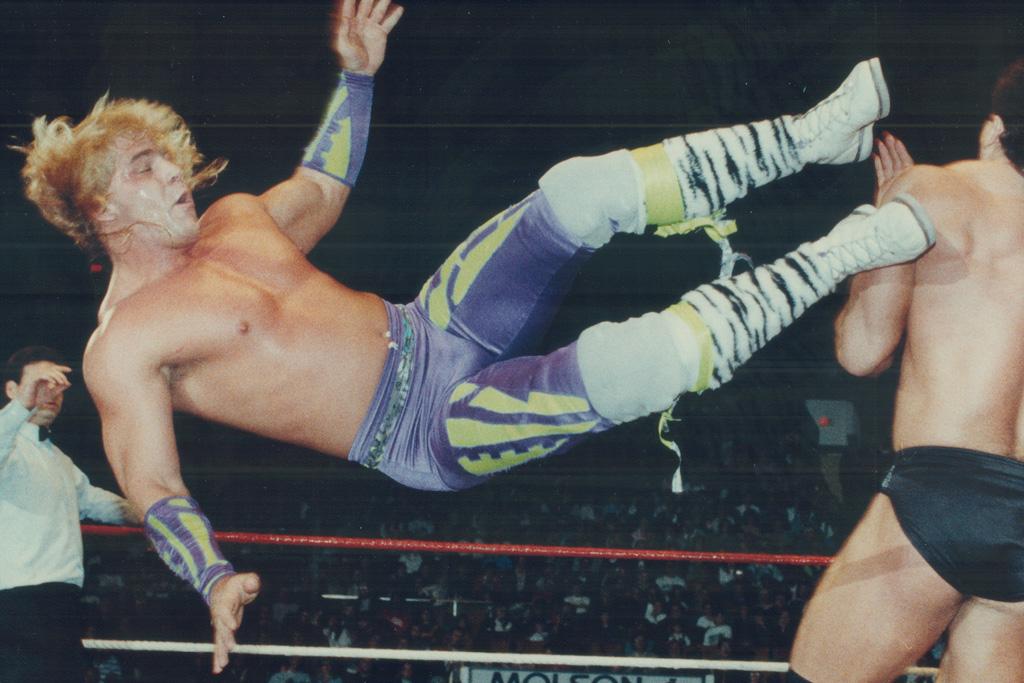 shawn michaels royal rumble 1995