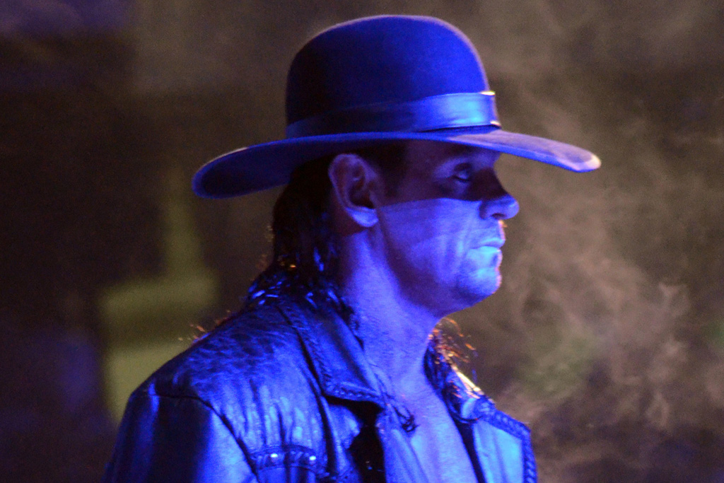 undertaker royal rumble 1991