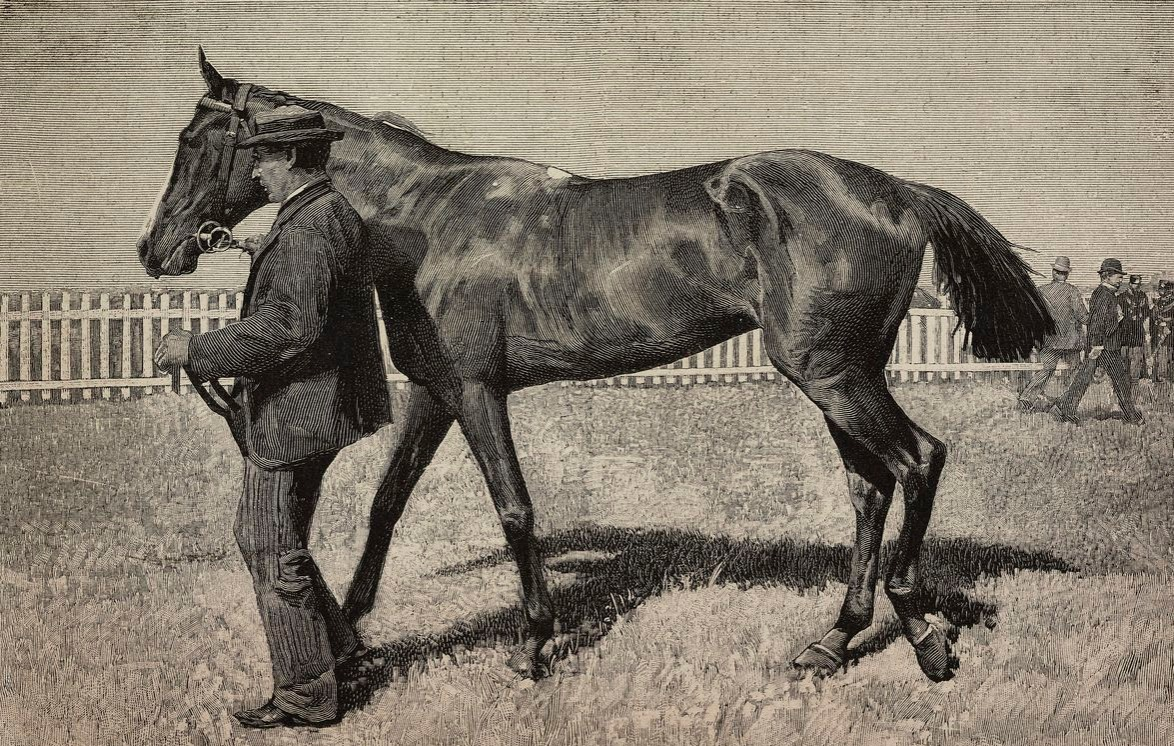 Doralice, winning horse of the Royal Derby in Rome, Italy