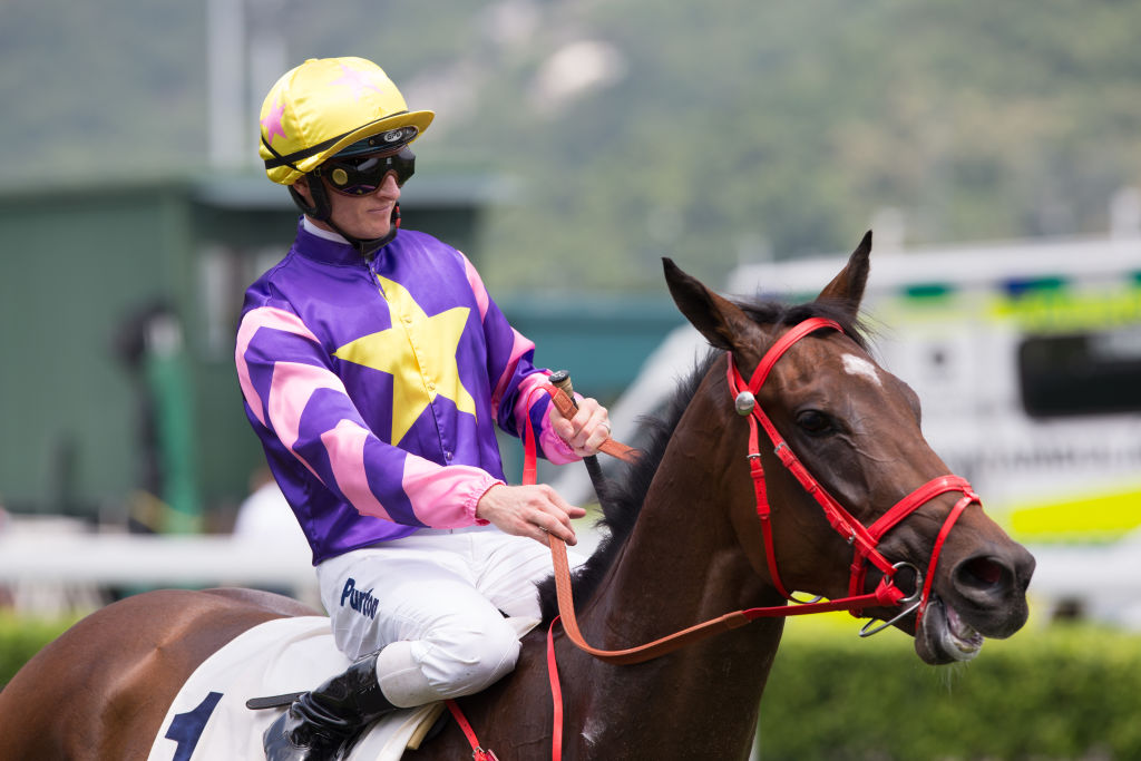 jockey wearing purple silk