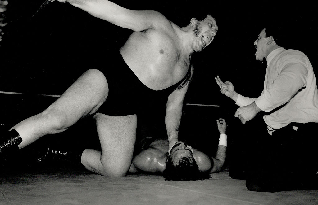 andre the giant greatest wrestlers all time