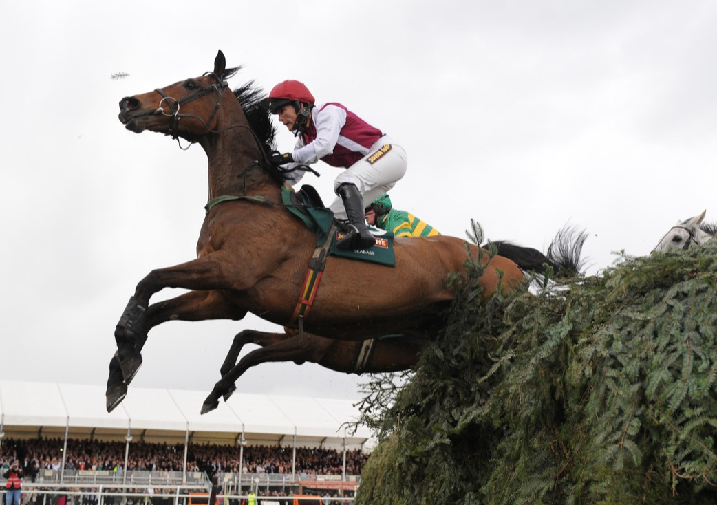 Seabass and Katie Walsh clear the final fence during the John Smith's Grand National Chase