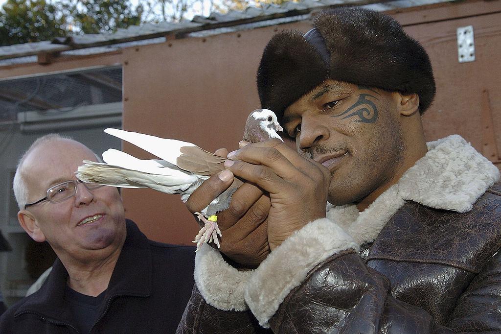 Former world heavyweight boxing champion Mike Tyson