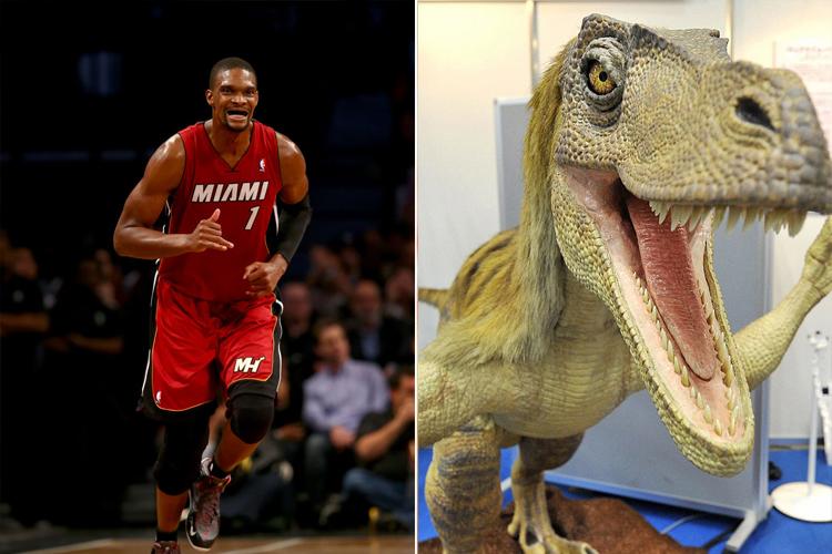 Chris Bosh Is A Velociraptor