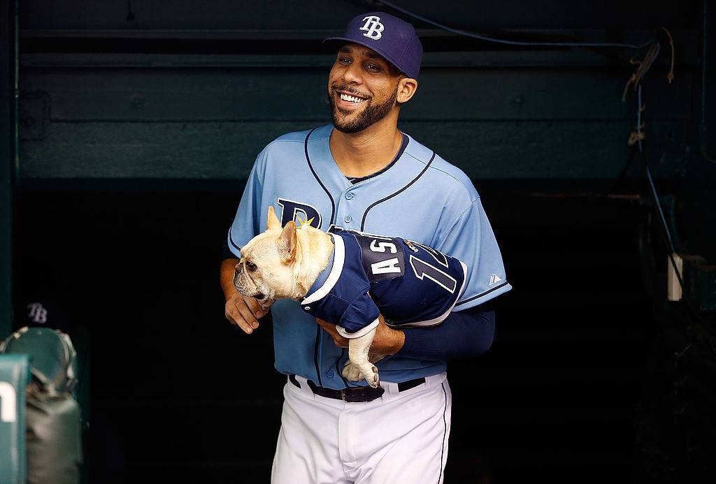 david price tampa bay