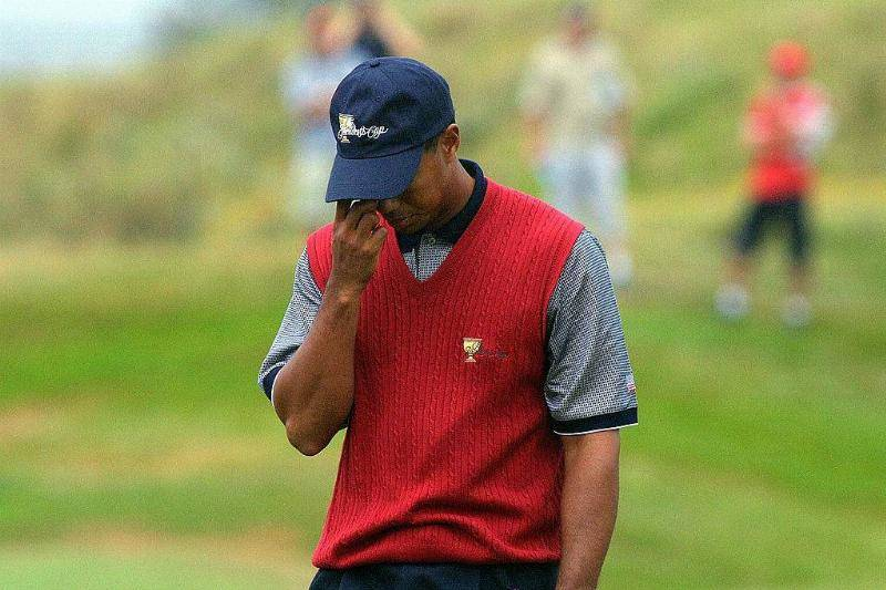 Tiger's Career Was Greatly Impacted